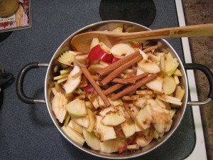 Apples and cinnamon sticks ready to cook