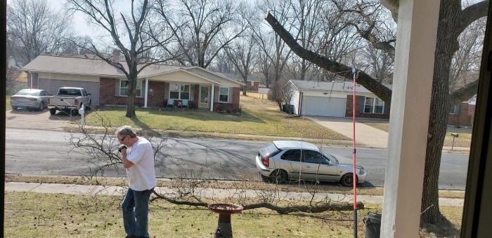 Man using manual branch saw to cut tree limb